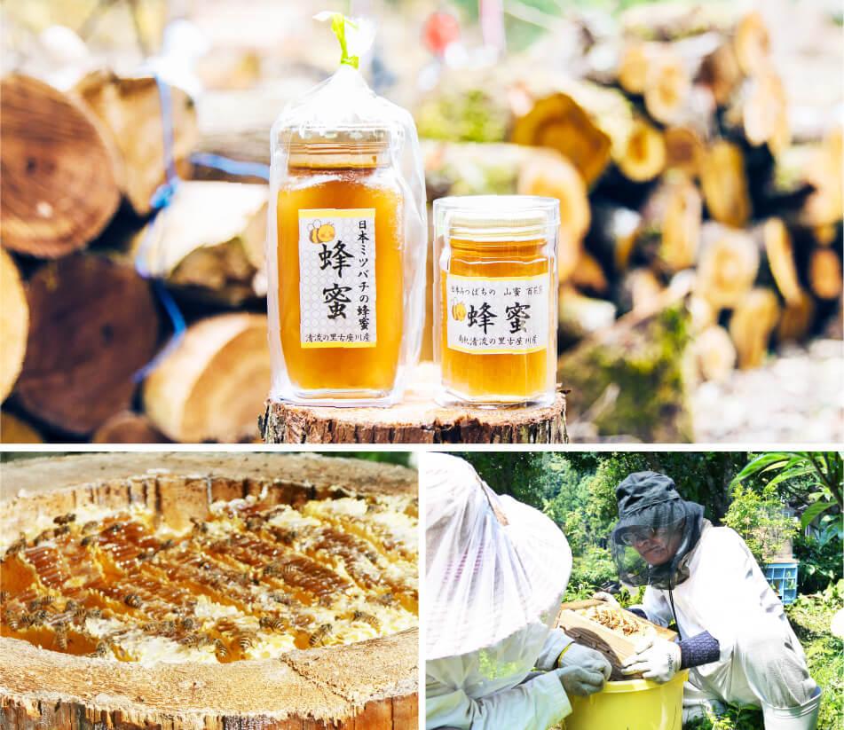 ベリー工房高田蜂蜜の画像