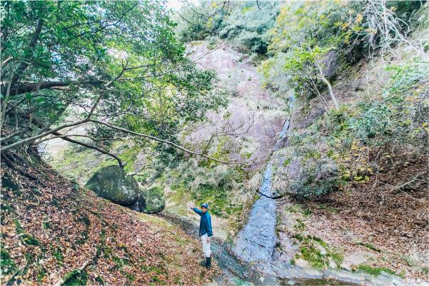 スマホ用嶽の森山の画像