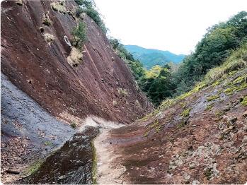 ナメコト岩の画像