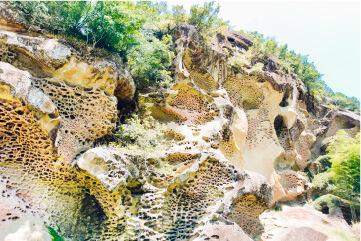 スマホ用虫喰岩の画像