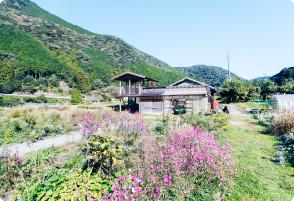 kii gardenの画像