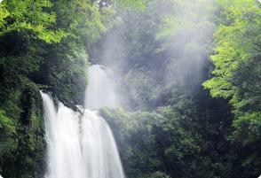 中津谷の滝の画像