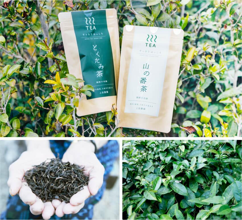 上田農園のどくだみ茶と番茶の画像