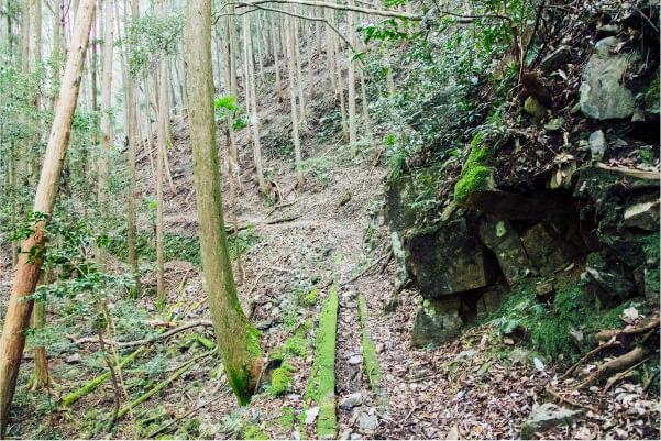 スマホ用中津谷の滝注意書きの画像