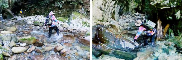 [植魚の滝][ハリオの滝]の画像